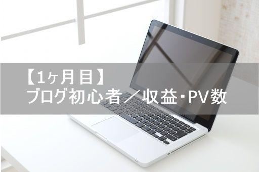 【1ヶ月目】ブログ初心者/収益・PV数