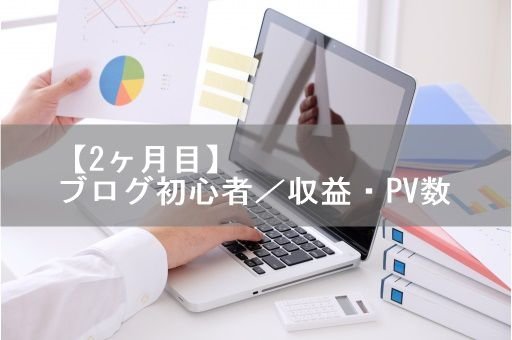 【2ヶ月目】ブログ初心者/収益・PV数